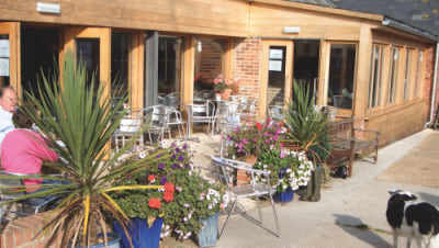 Bluebells Cafe.jpg